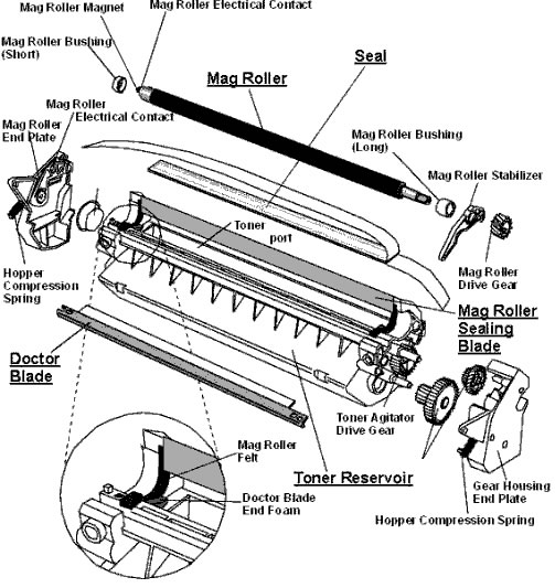 Magnetic Developer Roller